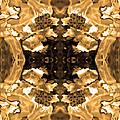 Sepia Bag Fairies 3 by Deprise Brescia