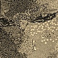 Sepia Face by Rob Hans