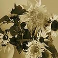 Sepia Garden Sunflower Bouquet by Mary Wolf