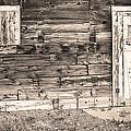 Sepia Rustic Old Colorado Barn Door And Window by James BO  Insogna