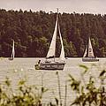 Sepia Sailing by Pati Photography