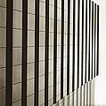 Sepia Skyscraper Series - Vertical Edge by Steven Milner