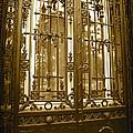 Sepia Spanish Door by Carol Groenen