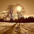 Sepia Sunrise by The Creative Minds Art and Photography