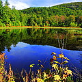 September Reflections by Mim White