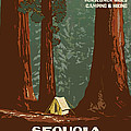 Sequoia National Park by Vintage Printery
