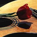 Serenade by Angela Davies