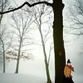 Serenade D'hiver by Natasha Marco