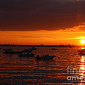 Serenity At The Bay - Sunset by Dora Sofia Caputo Photographic Design and Fine Art