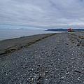 Serenity At The Beach by Patricia Twardzik