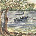 Serenity Sailboat by Nancy Taylor