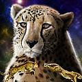First In The Big Cat Series - Cheetah by Thomas J Herring