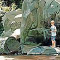 Serious Fishin' by Lynn Hansen