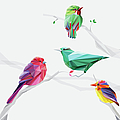 Set Of Abstract Geometric Colorful Birds by Pika111