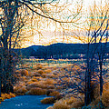 Setting Sun At Rocky Mountain Arsenal_2 by Tom Potter