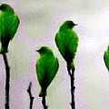 Seven Birds Of Green by Bruce Nutting
