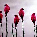 Seven Birds Of Red by Bruce Nutting