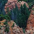 Seven Falls Mountain's Colorado by Robert D  Brozek