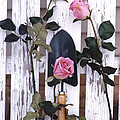 Shabby Chic Cottage Romantic Pink Roses Garden Tools  by Kathy Fornal
