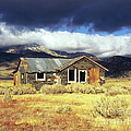 Shack On 395 by Jim And Emily Bush