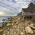 Shack On The Sound by Robert Seifert