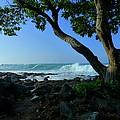 Shade On The Shore by Lori Seaman