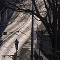 Shadow And Light by Muhie Kanawati