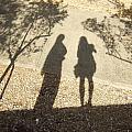 Shadow Friends by Katerina Naumenko