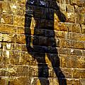 Shadow Of Michaelangelo's David by Jenny Setchell