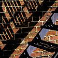 Shadow Walker by Douglas J Fisher
