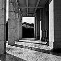 Shadowplay by Jerneja Kraigher