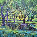 Shadows At Noon - Indian Landscapes by Usha Shantharam