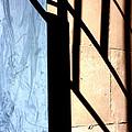 Shadows by Marcia Lee Jones