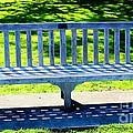 Shadows Of A Park Bench by Judy Palkimas