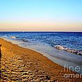 Shadows On Sand Beach by Nina Ficur Feenan