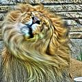 Shake It Off Lazy Boy At The Buffalo Zoo by Michael Frank Jr
