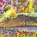 Shakespeare Garden Central Park New York City by Carol Wisniewski