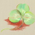 Shamrock Clover by MM Anderson