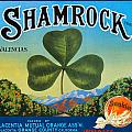 Shamrock Crate Label by Label Art