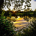 Shannon River Sunset At Roosky by James Truett