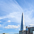 Shard by Svetlana Sewell