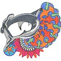Shark Art by Cherie Sexsmith