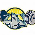 Shark Weightlifter Lifting Barbell Mascot by Aloysius Patrimonio