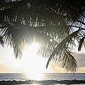 Sharks Cove Sunset by Brandon Tabiolo