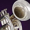 Sharp Silver Trumpet by M K  Miller
