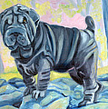 Sharpei ... A Blue Day by Lyn Cook