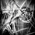 Shatter - Black And White by Joseph Skompski