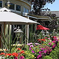 Shaw Cafe And Wine Bar - Niagara On The Lake by Christiane Schulze Art And Photography