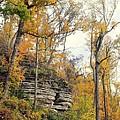 Shawee Bluff In Fall by Marty Koch
