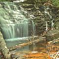Shawnee Falls At Ricketts Glen by Adam Jewell